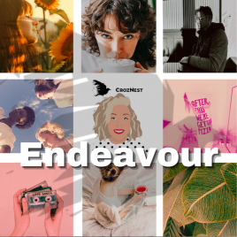 Vivienne Johns Curated Content Endeavour Package