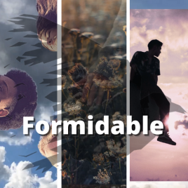 Vivienne Johns Curated Content Formidable Package